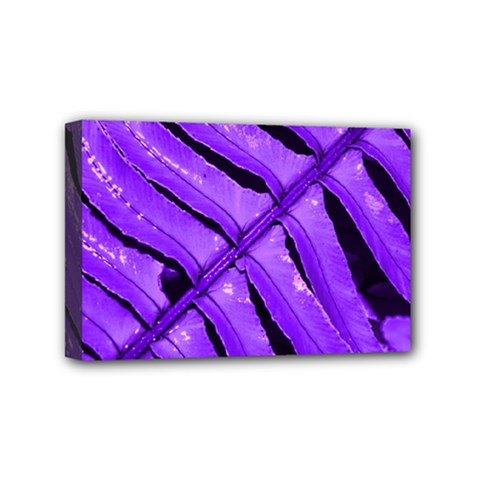 Purple Fern Mini Canvas 6  X 4  by timelessartoncanvas