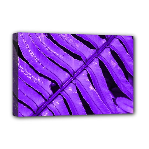 Purple Fern Deluxe Canvas 18  X 12   by timelessartoncanvas