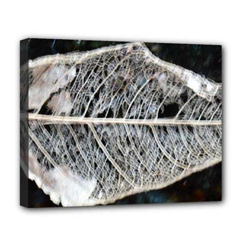 Modern Leaf Deluxe Canvas 20  x 16   by timelessartoncanvas