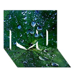 Morning Dew I Love You 3d Greeting Card (7x5)  by Costasonlineshop