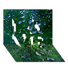 Morning Dew Love 3d Greeting Card (7x5)