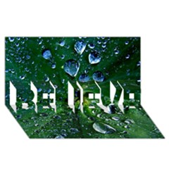 Morning Dew Believe 3d Greeting Card (8x4)