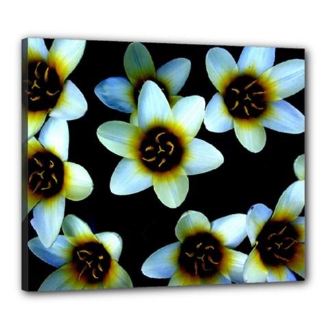 Light Blue Flowers On A Black Background Canvas 24  X 20  by Costasonlineshop