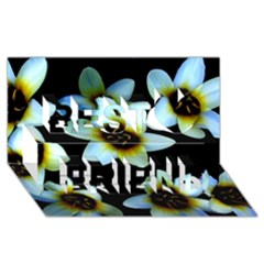 Light Blue Flowers On A Black Background Best Friends 3d Greeting Card (8x4)