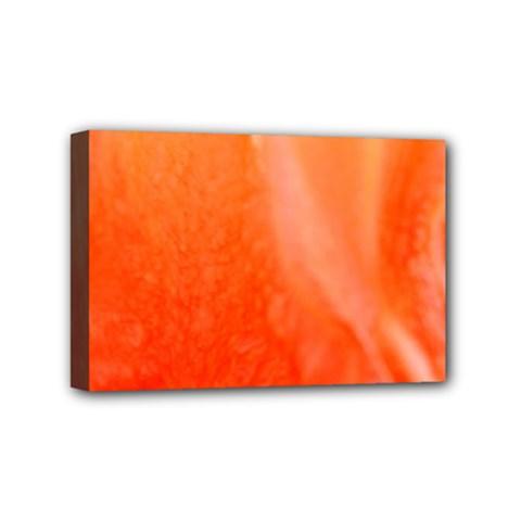 Floating Orange Mini Canvas 6  X 4  by timelessartoncanvas