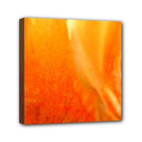 Floating Orange And Yellow Mini Canvas 6  X 6  by timelessartoncanvas