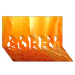Floating Orange And Yellow Sorry 3d Greeting Card (8x4)
