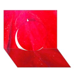 Red And Beautiful Circle 3d Greeting Card (7x5)