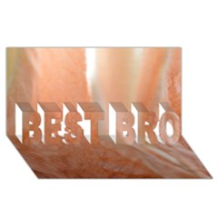 Floating Subdued Peach Best Bro 3d Greeting Card (8x4)  by timelessartoncanvas