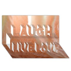 Floating Subdued Peach Laugh Live Love 3d Greeting Card (8x4)  by timelessartoncanvas