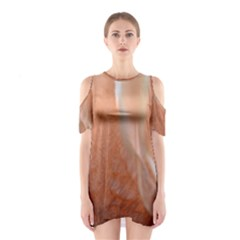 Floating Subdued Peach Cutout Shoulder Dress by timelessartoncanvas
