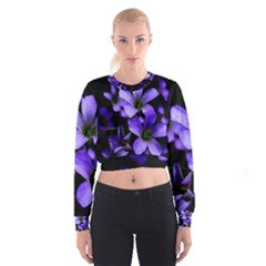 Springtime Flower Design Women s Cropped Sweatshirt