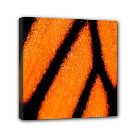 Butterfly Design 1 Mini Canvas 6  X 6  by timelessartoncanvas