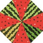 watermelon - Hook Handle Umbrella (Medium)