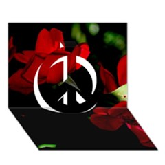 Roses 3 Peace Sign 3d Greeting Card (7x5)