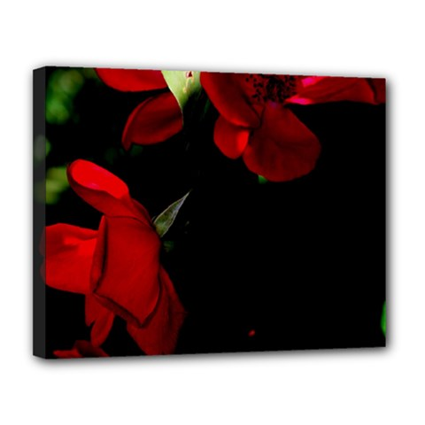 Roses 4 Canvas 14  X 11  by timelessartoncanvas