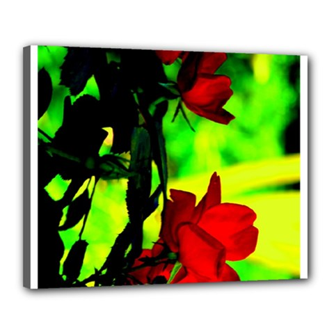 Red Roses And Bright Green 1 Canvas 20  X 16  by timelessartoncanvas