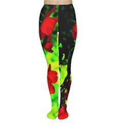 Red Roses And Bright Green 1 Women s Tights by timelessartoncanvas