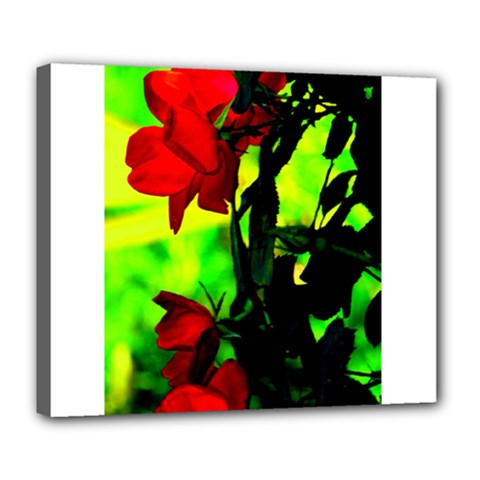 Red Roses and Bright Green 3 Deluxe Canvas 24  x 20   by timelessartoncanvas