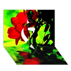 Red Roses And Bright Green 3 Ribbon 3d Greeting Card (7x5)