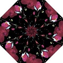 Mauve Pink Roses Folding Umbrellas by timelessartoncanvas