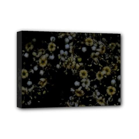 Little White Flowers 3 Mini Canvas 7  X 5  by timelessartoncanvas