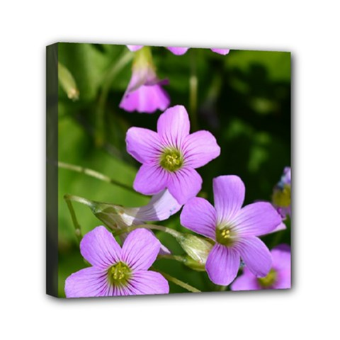 Little Purple Flowers Mini Canvas 6  X 6  by timelessartoncanvas