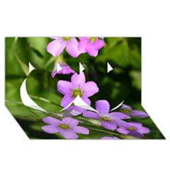 Little Purple Flowers Twin Hearts 3d Greeting Card (8x4)  by timelessartoncanvas