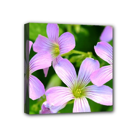 Little Purple Flowers 2 Mini Canvas 4  X 4  by timelessartoncanvas