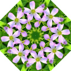 Little Purple Flowers 2 Folding Umbrellas by timelessartoncanvas