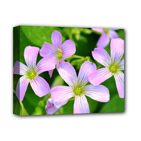 Little Purple Flowers 2 Deluxe Canvas 14  X 11  by timelessartoncanvas