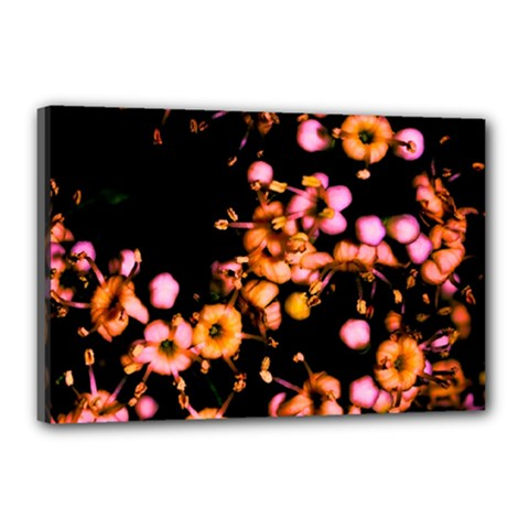 Little Peach And Pink Flowers Canvas 18  X 12  by timelessartoncanvas