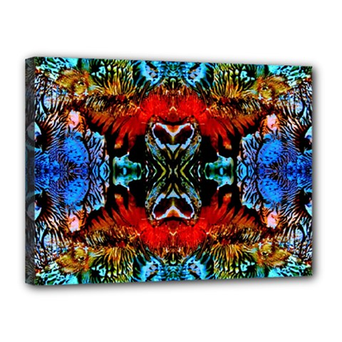 Colorful  Underwater Plants Pattern Canvas 16  X 12  by Costasonlineshop
