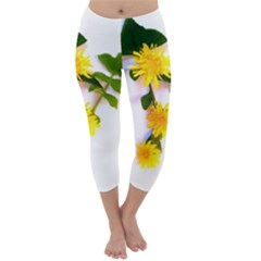 Margaritas Bighop Design Capri Winter Leggings  by bighop