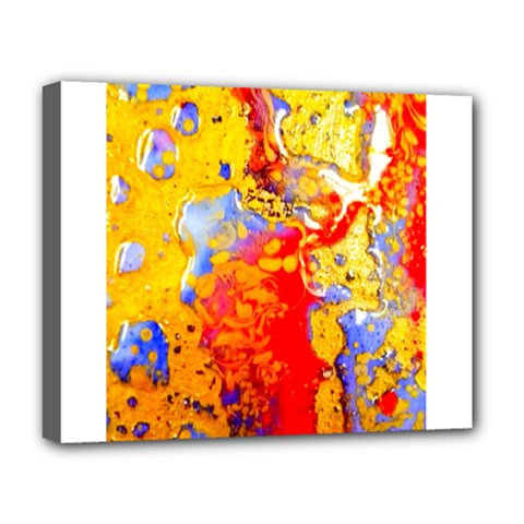 Gold And Red Deluxe Canvas 20  X 16   by 20JA