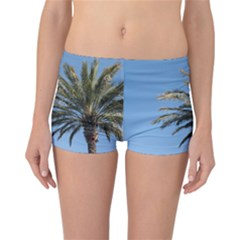 Tropical Palm Tree  Reversible Boyleg Bikini Bottoms by BrightVibesDesign