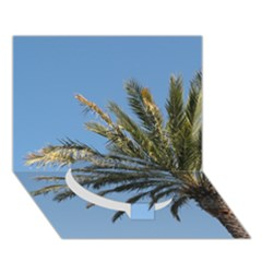 Tropical Palm Tree  Circle Bottom 3D Greeting Card (7x5)  by BrightVibesDesign