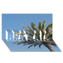 Tropical Palm Tree  Best Sis 3d Greeting Card (8x4)