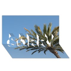 Tropical Palm Tree  Sorry 3d Greeting Card (8x4)