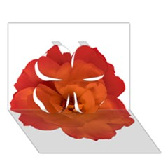Red Rose Photo Clover 3D Greeting Card (7x5)  by dflcprints