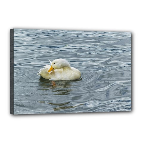White Duck Preening At Lake Print Canvas 18  X 12  by dflcprints
