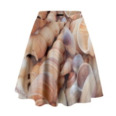 Exotic Tropical Romantic Sea Shells High Waist Skirt by yoursparklingshop