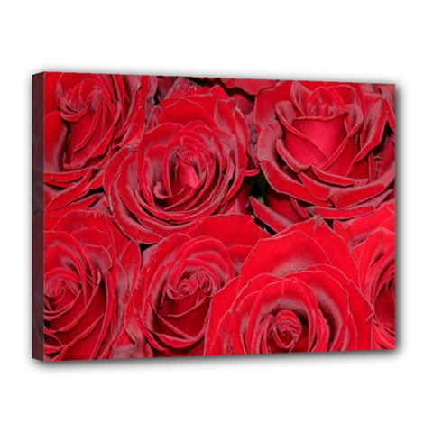 Red Roses Love Canvas 16  X 12  by yoursparklingshop