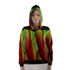 Stained Glass Window Hooded Wind Breaker (women) by SugaPlumsEmporium