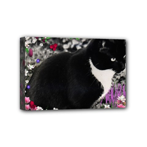 Freckles In Flowers Ii, Black White Tux Cat Mini Canvas 6  X 4  by DianeClancy
