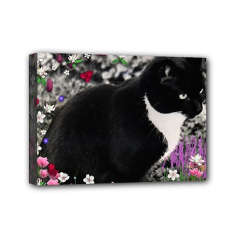 Freckles In Flowers Ii, Black White Tux Cat Mini Canvas 7  X 5  by DianeClancy