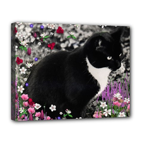 Freckles In Flowers Ii, Black White Tux Cat Canvas 14  X 11  by DianeClancy