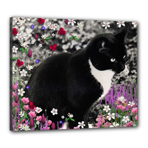 Freckles In Flowers Ii, Black White Tux Cat Canvas 24  X 20  by DianeClancy