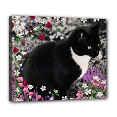 Freckles In Flowers Ii, Black White Tux Cat Deluxe Canvas 24  X 20   by DianeClancy
