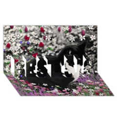 Freckles In Flowers Ii, Black White Tux Cat Best Sis 3d Greeting Card (8x4)  by DianeClancy